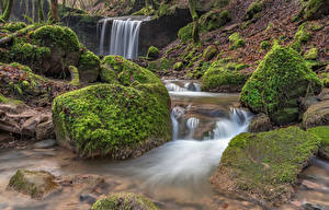 Image Germany Forest Stone Waterfalls Moss Streams Butzerbach valley Nature