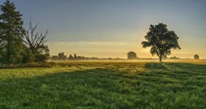 Hintergrundbilder Deutschland Sonnenaufgänge und Sonnenuntergänge Felder Bayern Bäume Gras Nebel Augsburg Natur