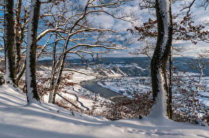 Pictures Germany Winter Rivers Trees Snow Rheinland-Pfalz, river Moselle