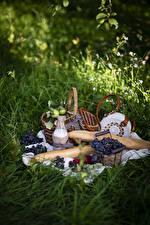 Fotos Weintraube Brot Milch Äpfel Picknick Weidenkorb Flasche