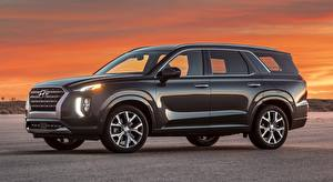 Bilder Hyundai Seitlich Sport Utility Vehicle Metallisch Palisade US-spec, 2019 automobil