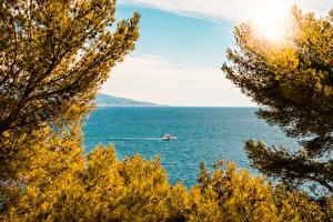 Hintergrundbilder Monaco Meer Jacht Ast Monaco-Ville