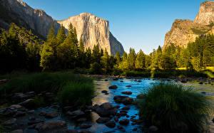 Fotos Parks Fluss Vereinigte Staaten Berg Steine Wald Yosemite Kalifornien Gras Sierra Nevada Natur
