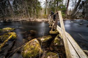 Wallpaper Rivers Stones Bridges Man Moss Wooden Nature