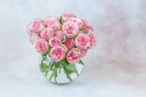 Pictures Roses Bouquet Vase Pink color Flowers