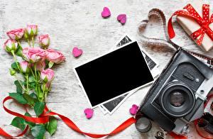Fotos Rosen Valentinstag Vorlage Grußkarte Herz Fotoapparat Blüte
