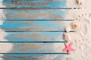 Desktop hintergrundbilder Muscheln Seesterne Bretter Sand Fußabdrücke Vorlage Grußkarte