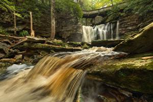 Picture Stones Bridge Waterfalls USA Parks Moss West Virginia, Elakala Falls, Park Blackwater Falls, Shays Run River Nature