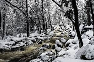 壁纸、石、公園、アメリカ合衆国、ヨセミテ国立公園、雪、木、渓流、カリフォルニア州、Bridalveil Creek、自然、