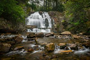 Pictures Stone Waterfalls USA Pennsylvania, Hawk Falls, Hickory Run State Park Nature