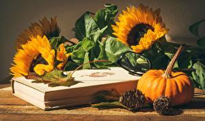 Wallpaper Helianthus Pumpkin Still-life Book Glasses Conifer cone Foliage flower Food