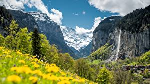 Wallpapers Switzerland Waterfalls Mountains Scenery Trees Cliff Alps Staubbach Fall, Lauterbrunnen, Canton Bern