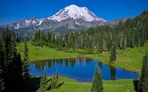Hintergrundbilder USA Berg Wald See Parks Mount Rainier national Park, Tipsoo Lake, Washington state