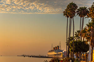 Image USA Sunrises and sunsets Coast Pier Ship California Palms Queen Mary Long Beach Nature