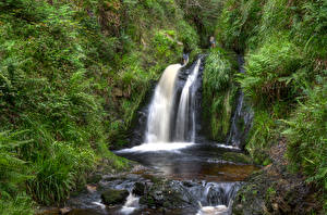 Images United Kingdom Parks Stones Waterfalls Trees Northern Ireland, Gortin Forest Park Nature