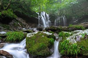 Images Waterfalls Stone Fog Moss Nature