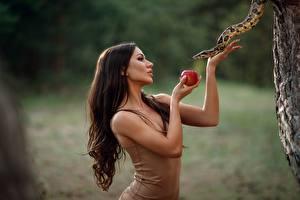 Bilder Äpfel Schlangen Hand Braune Haare Sergey Sorokin, serpent tempter Mädchens