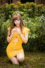 Fotos Asiaten Kleid Blick Braune Haare junge frau
