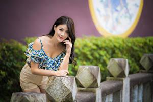 Sfondi desktop Asiatico In posa Pantaloncini Blusa Sguardo Sfondo sfocato giovani donne