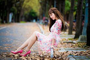 Bilder Asiatische Sitzt Stöckelschuh Bein Blattwerk Kleid Unscharfer Hintergrund junge frau