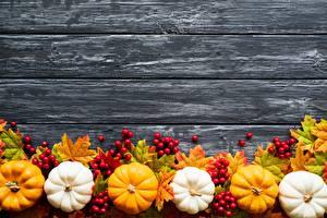 Hintergrundbilder Herbst Kürbisse Vorlage Grußkarte Bretter das Essen