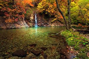 Picture Autumn Waterfalls River Grass Moss Nature
