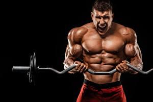 Bilder Bodybuilding Mann Hantelstange Trainieren Muskeln Hand sportliches