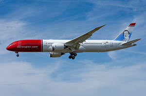 Picture Boeing Airplane Passenger Airplanes Side 787-9, Norwegian Air