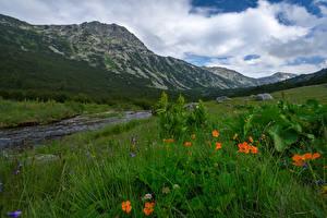 Bilder Bulgarien Berg Flusse Gras Rila Natur