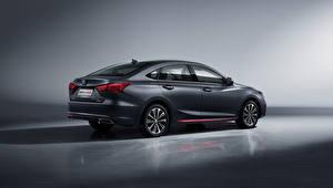 Bilder Changan Graues Metallisch Chinesische Raeton CC Blue Drive, 2020 automobil