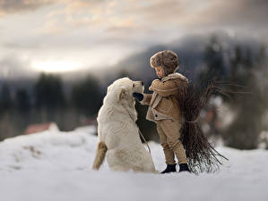 Image Dogs Boys Snow Blurred background Animals
