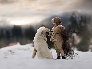 デスクトップの壁紙、、イヌ、少年、雪、ボケ写真、、動物