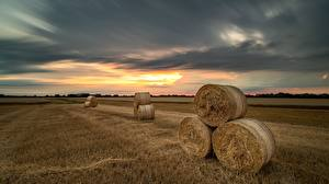 Pictures Fields Evening Hay Nature