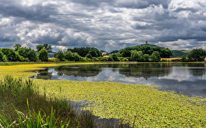 Pictures Germany Lake Clouds Rodder Maar Nature