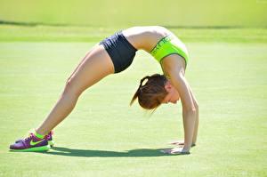 Pictures Gymnastics Physical exercise Legs gymnastic bridge Sport Girls