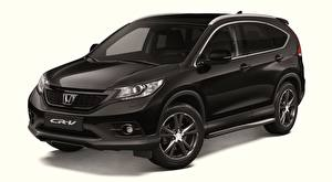 Pictures Honda Black Metallic CR-V, Black Edition, 2013 automobile