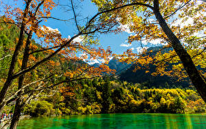 Image Jiuzhaigou park China Autumn Parks Forest Lake Nature