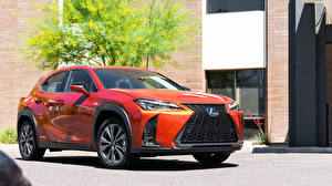 Photo Lexus Orange 2019 UX 250h F SPORT