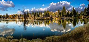 Hintergrundbilder Flusse Vereinigte Staaten Park Herbst Wälder Spiegelung Spiegelbild Grand Teton national Park, Wyoming, Snake River