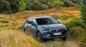 Hintergrundbilder Seat Softroader Metallisch Schwarz Tarraco Xcellence, 2019 auto