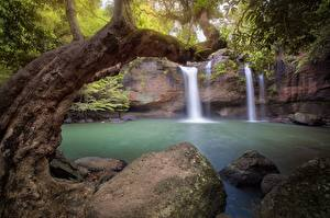 Pictures Stones Waterfalls Trees Nature