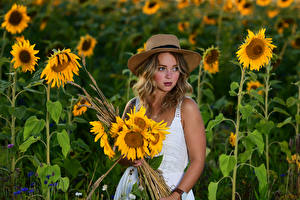 Wallpapers Helianthus Bouquets Blonde girl Frock Hat Selina female Flowers