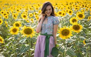 Bilder Sonnenblumen Acker Lächeln Laura Mädchens Blumen