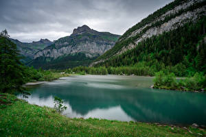 Wallpapers Switzerland Mountains Alps Trees Lac de Derborence Nature