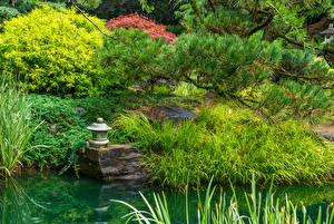 Fotos Vereinigte Staaten Garten Teich Ast Gras Straßenlaterne Gibbs Gardens