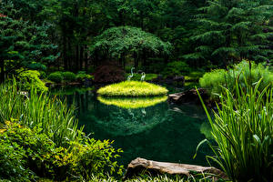 Fotos USA Parks Teich Design Bäume Gibbs Gardens
