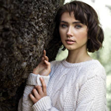 Bilder Sweatshirt Hand Starren Bokeh Brünette Abigail junge frau