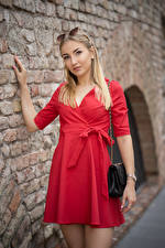 Image Blonde girl Posing Dress Wall Staring Alina young woman