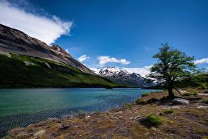 Bilder Argentinien Gebirge See Bäume Laguna Hija Natur