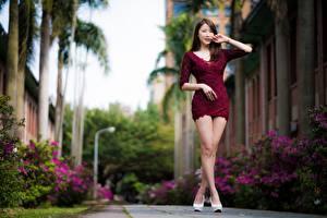 Hintergrundbilder Asiatische Unscharfer Hintergrund Braunhaarige Posiert Kleid Bein junge Frauen